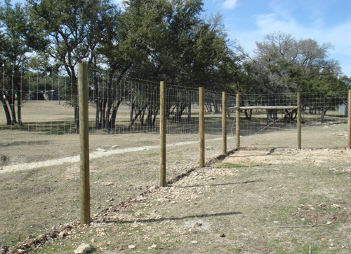deer proof garden fence pine posts