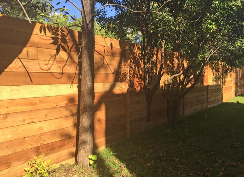 horizontal cedar backyard fence trimmed around trees]