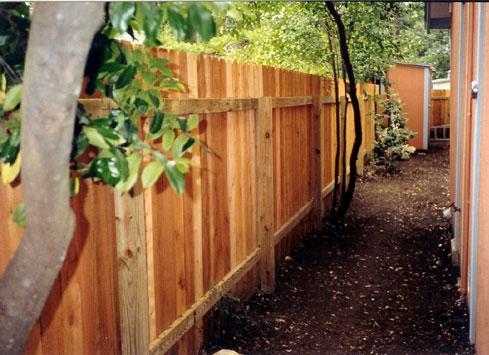 simple wood backyard fence